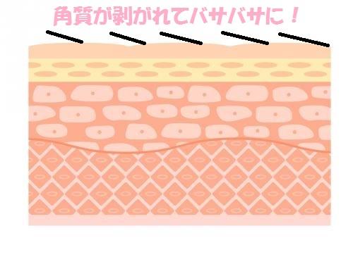 kirei-kannsoukusumi