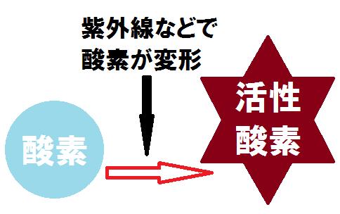 kirei-kasseisannso